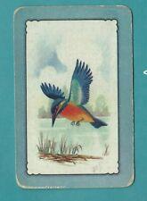 Vintage Coles Swap Card    Kingfisher Bird