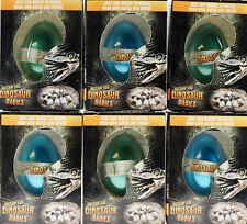Set of 6 Grow Your Own Dinosaur Babies Animal Hatching Novelty Eggs