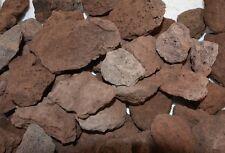 100 Stück Lava Steine 4-9 cm - Gasgrill Elektrogrill,Terrarium,Gärten, Aquarien