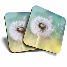 2 x Coasters - Pretty Dandelion Plant Cool Home Gift #3863