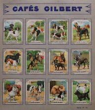 Images Chromos Cafés Gilbert. Les chiens