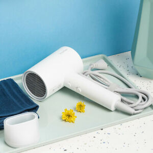 Professional Hair Dryer Quick Dry Home Negative Ion Portable Hairdryer Diffuser