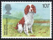 GB - 1979 P 10 1/2 Sello, perros-Springer Spaniel Galés-desmontado