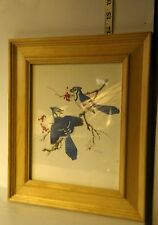 Light Colored Wood Frame w/Glass Print Blue Jays Signed by Sherm Pehrson 14 x 12