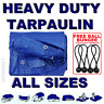 ALL Sizes Of Heavy Duty Tarpaulin Cover Ground Camping Sheet + BUNGEE BALLS