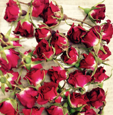 RED CLARET MINIATURE  DRIED ROSE BUDS (2-3CMS) - BEAUTIFUL REAL FLOWER NATURAL