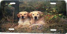 Novelty license plate Dog Golden Labrador Retrievers new aluminum made in USA