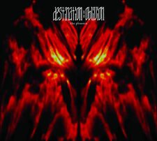 """""""The Phoenix"""" by Destination : Oblivion"""