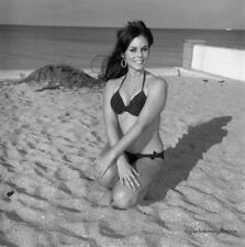 1966 Bunny Yeager Estate Pinup Camera Negative Beautiful Brunette Model Bikini