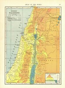 1914 Antique PALESTINE Map Hammond Atlas Map of Modern Palestine 9196