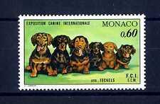 MONACO - 1976 - Esposizione canina internazionale di Montecarlo