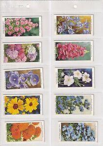 1939 WD & HO Wills Garden Flowers. Full set of 50
