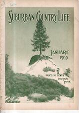 1905 Suburban Life January - Angora Cats and how to raise them; Brookline MA