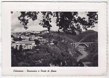 0259 CATANZARO CITTÀ - PONTE DI SIANO Cartolina FOTOGRAFICA viaggiata
