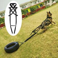 Собака вес подъема ремень спорт упражнения тренировки инструмент для немецкой овчарки большой