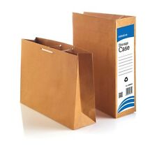 File Away Archive Storage Cases / Bags Box 50 with tie lace SB9628