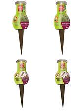 Bayer Beautykur 4 x 40 ml für Orchideen Und Mediterrane Pflanzen, B-Ware