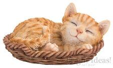 Vivid Arts-Pet Pals GATTINO nel cesto & CAT GATTINO BOX-Ginger