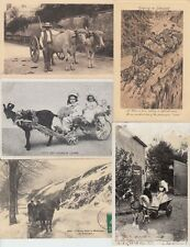 ATTELAGES ANIMAL CARTS  16 Vintage Cartes Postales Mostly 1900-1940