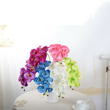 Real Touch Phalaenopsis Panda Orchid Artificial Silk Flowers Home Decoration.