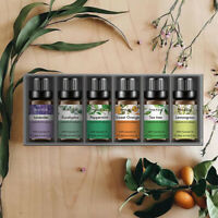 100% Pure Essential Oil Aromatherapy Gift Set for Diffuser Humidifier-6PCS 10ml