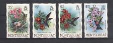 (936131) Flowers, Birds, Montserrat