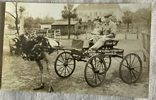 Real Photo Postcard RPPC Girl With Ostrich Pulling Cart Vintage Jacksonville FL