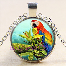 Pretty Parrot Photo Cabochon Glass Tibet Silver Chain Pendant Necklace