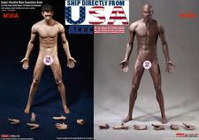1/6 PHICEN PL2018-M36 Seamless Male Muscular Figure Body TBLeague DARK SUNTAN