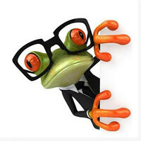 3D Crazy Frog Window Wall Decal Sticker For Car Home Bathroom Toilet Furniture