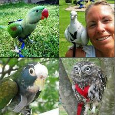 Bird Parrot Adjustable Harness Leash Flight Suit Training Flying Rope