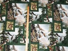 Wild Wings Clayton Weirs Eagle Wildlife Springs Creative Products Fabric  BTY