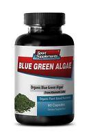 Spirulina Tablets - Organic Blue Green Algae 500mg - Stem Cell Activator 1B