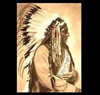 1885 Chief Sitting Bull PHOTO Portrait Lakota Indian, Battle of Little Bighorn