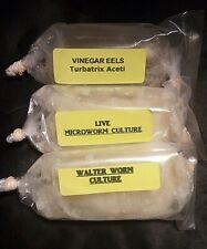 1 Oz Each Microworm - Walter Worm - Vinegar Eel Cultures Fry Food Guppy Betta