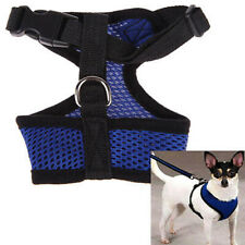 Safety Beautiful Summer Adjustable Ventilate Mesh Fabric Dog Chest Strap Leash