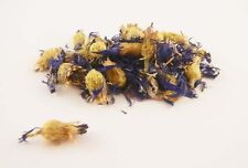 Cornflowers (Centaurea cyanus) whole, dried FREE SHIPPING 1 oz - 1 pound