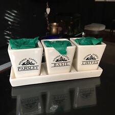 Ceramic Windowsill Herb Planter Pots with seeds kitchen garden starter kit gift