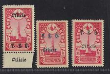 "TURKEY CILICIA 1919 OTTOMAN 20 PARAS OVPT ""CILICIE"" TRANSPOSED AT TOP & MARGIN"