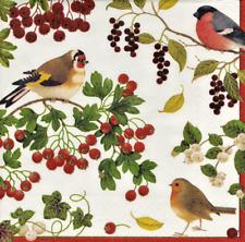 4 X SINGOLO CARTA TAVOLA tovagliolo/Decoupage/Natale/Inverno gli Uccellini e Bacche