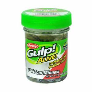 Berkley Gulp Alive Minnow Jar - 1 Inch