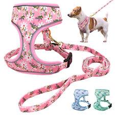 Small Large Dog Harness and Leash Set Pet Walk Collar Reflective Design Adjust