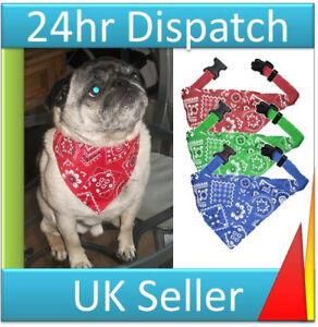 Pet Dog Costume Dog Bandana with Collar in Red Blue or Green Fast Dispatch New