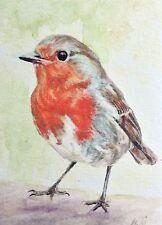 Robin Bird ACEO Limited Edition Print Mini Artwork By Helen MacNee