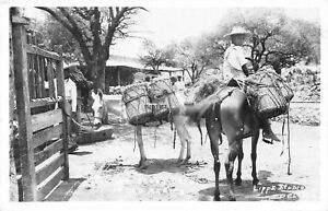 H71/ Foreign Postcard Villa Acuna Mexico RPPC c1940s Lippe Boy Mule 97