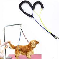 Pet Dog Harness No-Sit Per Haunch Holder Grooming Restraint Harness Leash Loop U
