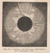 A8870 Eclisse Solare del 7 settembre 1878 - 1895 xilografia - Vintage Engraving