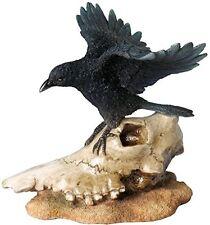 "6.5"" Crow on Sheep Skull Figurine Figure Statue Gothic Home Decor"
