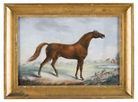 """high quality oil painting handpainted on canvas"""" a horse """"@N13746"""