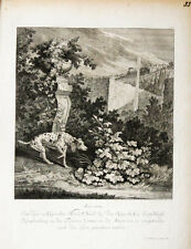 1744 Hund Jagdhund Hunting Dog Pointer Ridinger Jagd Kupferstich